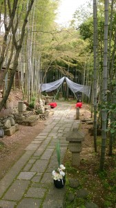 【京都結婚式レポート】愛染倉竹林挙式