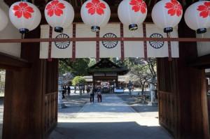 京都和婚 衣笠 平野神社の結婚式