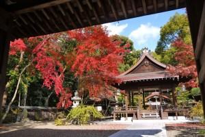 京都和婚 神社挙式 梨木神社の結婚式