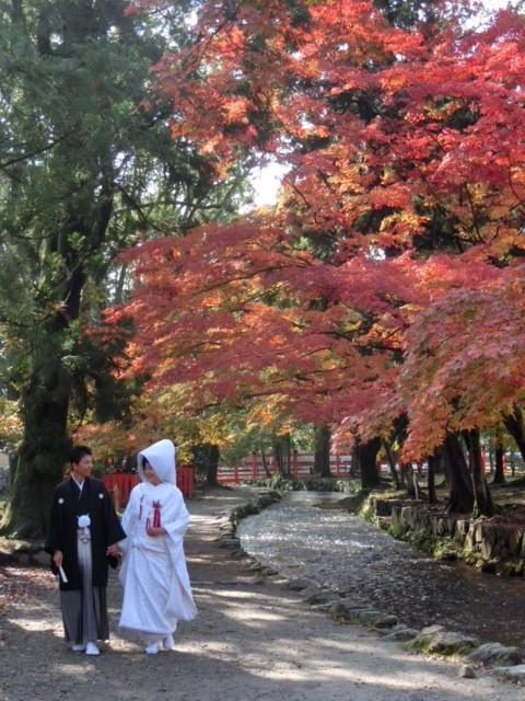 上賀茂神社での挙式♡
