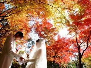 【3.14円周率プロポーズ】永遠に続く愛を・・・